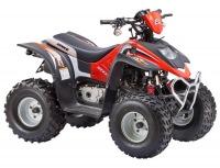 STELS ATV 100 C
