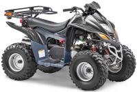 STELS ATV 110